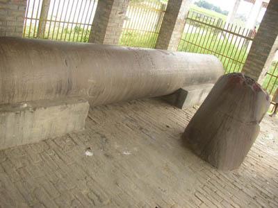Niglihawa pillar. Image Google