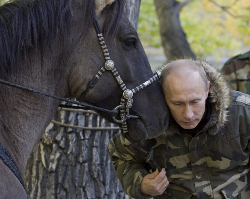 The Horse Whisperer In this Sept. 2010, photo released on Saturday, Oct. 30, 2010, Russian Prime Minister Vladimir Putin pats a horse during his trip in Ubsunur Hollow in the Siberian Tyva region (also referred to as Tuva), on the border with Mongolia, Russia. (AP Photo/RIA Novosti, Alexei Druzhinin, Pool)